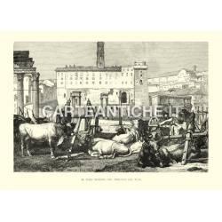 Il foro romano col mercato dei buoi