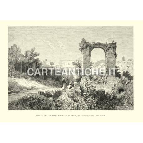 Veduta del Palatino rimpetto al Celio, al versante del Palatino.