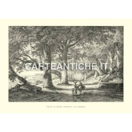 Strade di Castel Gandolfo - La Galleria