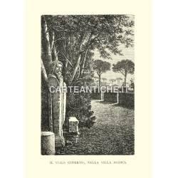 Il viale coperto nella Villa Medici