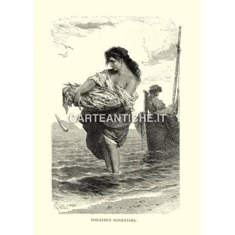 Pescatrice napoletana.
