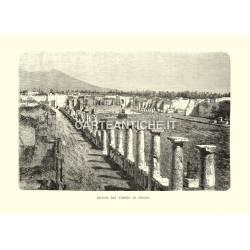 Rovine del Tempio di Pompei.