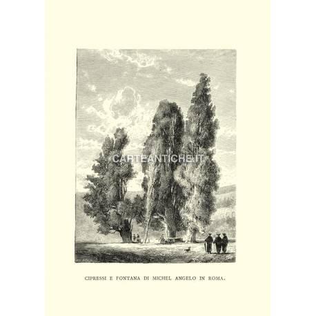Cipressi e fontana di Michel Angelo in Roma.