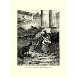 Idillio nelle rovine del Tempio di Vespasiano.