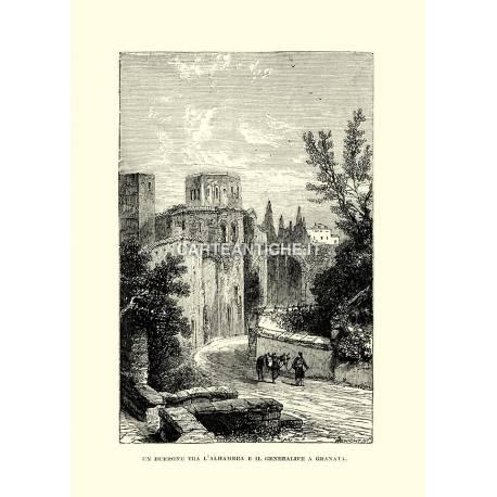 Un burrone tra l'Alhambra e il Generalife a Granata.