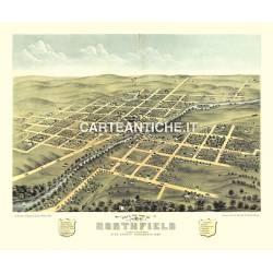 Veduta antica: USA 17 - Northfield, Minnesota - Ruger 1869
